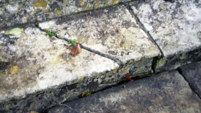 Broken Stone of the West Steps